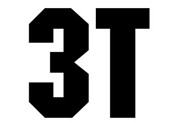 3T dingbat