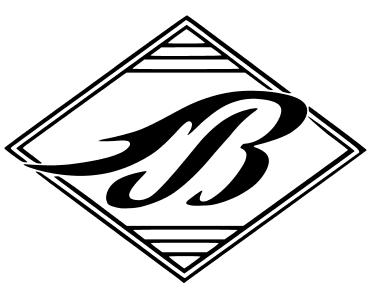Blaze logo dingbat